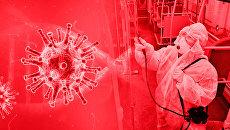 Пандемия в цифрах и фактах. Бюллетень коронавируса на 19:00 27 июля