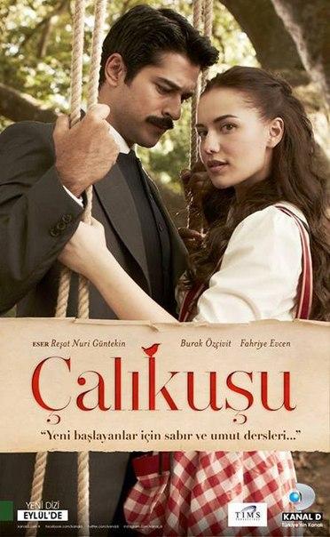 Турецкий фильм королек птичка певчая википедия