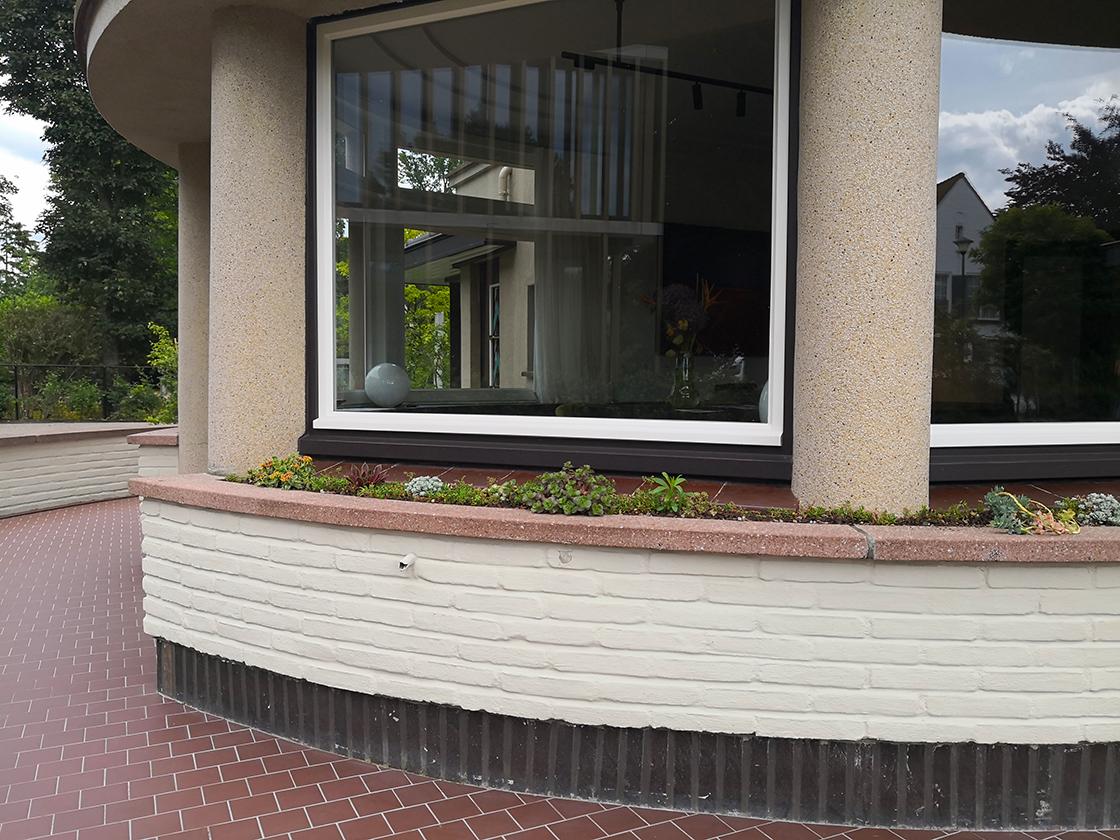VillaDeNil_sedum_Sint-Denijs-Westrem_03