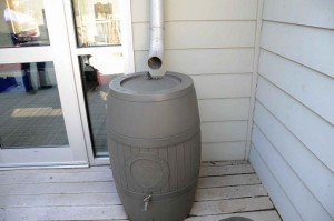 an-upclose-shot-of-a-rain-barrel-725x481