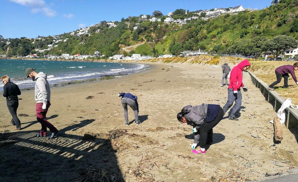 picking up rubbish on beach
