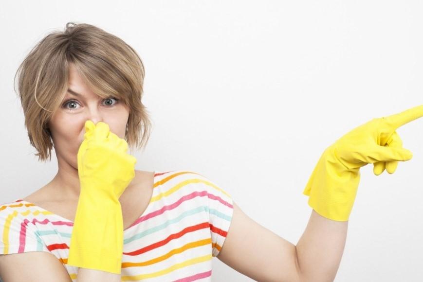 Чем удалить с дивана запах детской мочи