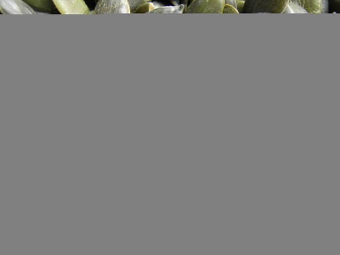 Тыквенные семечки при диете