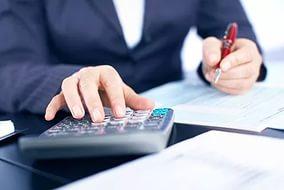 Пример резюме главного бухгалтера бюджетного учреждения
