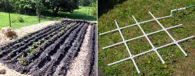 Подготовка и удобрение земли