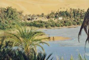 Что это оазис в пустыне