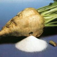 Технология получения сахара