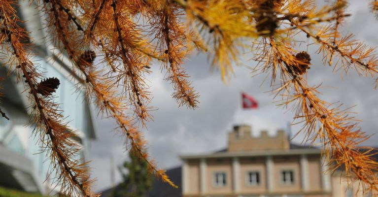 Hotel Castell im Herbst
