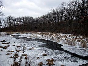Snowy river in Pinckney.jpg