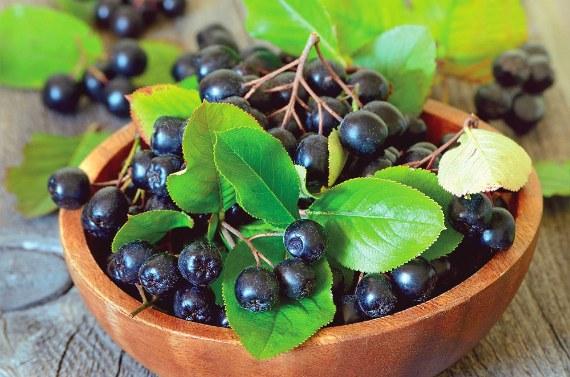 Заготовки из черноплодной рябины на зиму рецепты