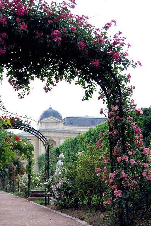 Orti botanici più belli - Parigi