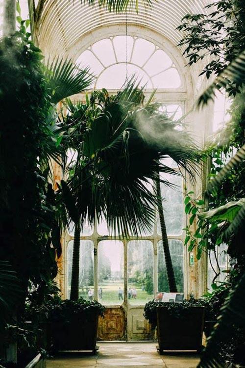 Orti botanici più belli - Londra