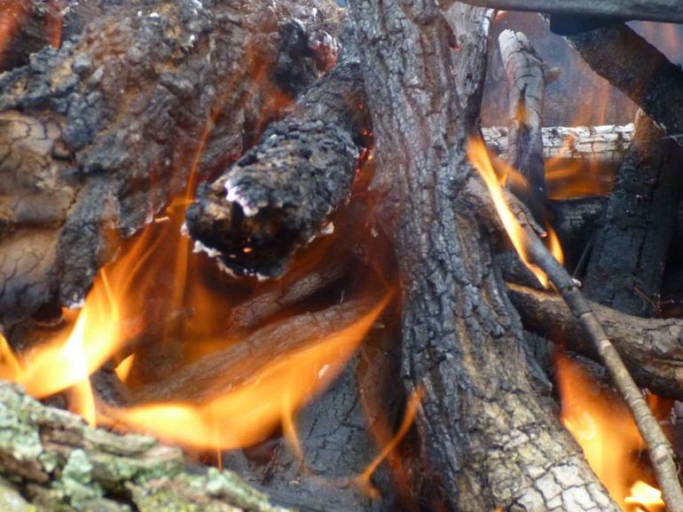 Сонник костер разжигать