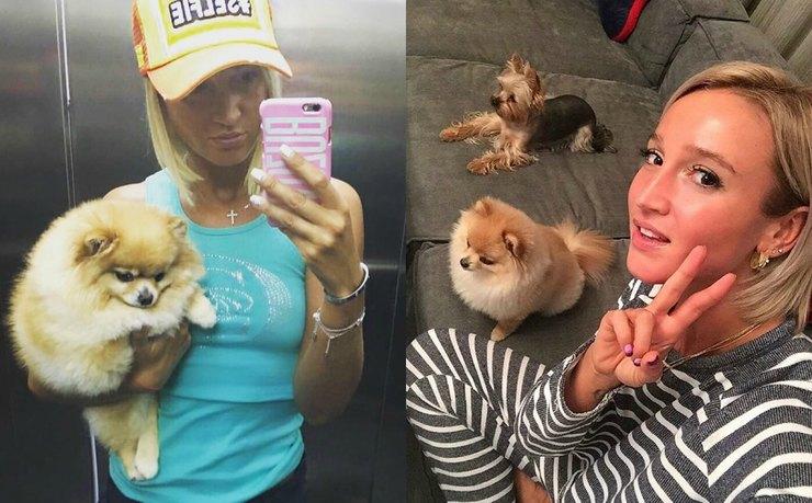 Ольга бузова инстаграм собак