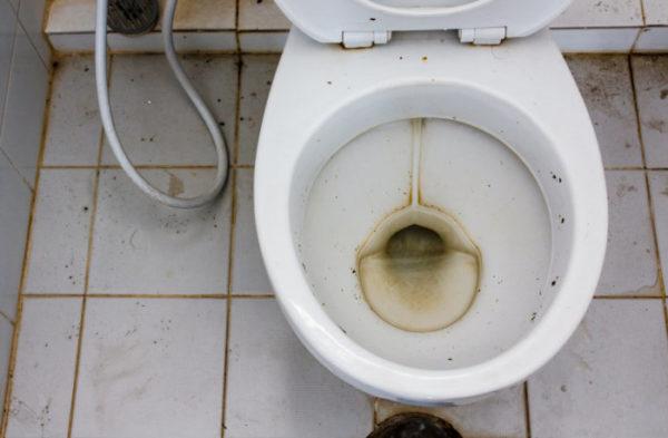 Чистка унитаза в домашних условиях