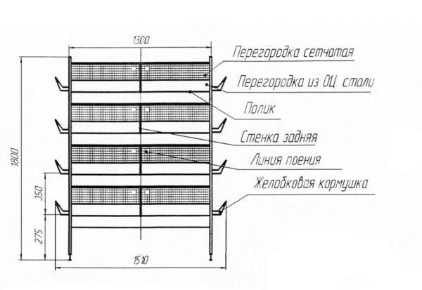 Клетки для перепелов своими руками: размеры и чертежи, из каких материалов можно сделать