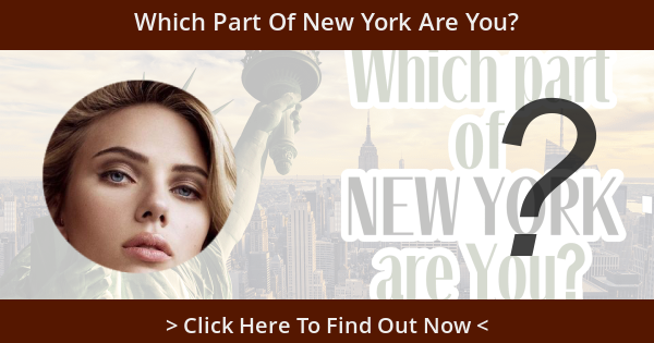 Which Part Of New York Are You?