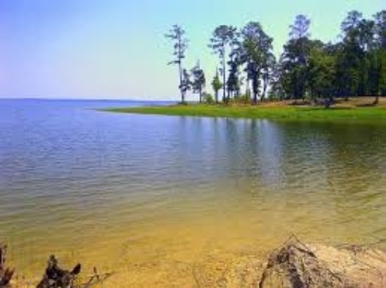 Sam rayburn reservoir jasper tx