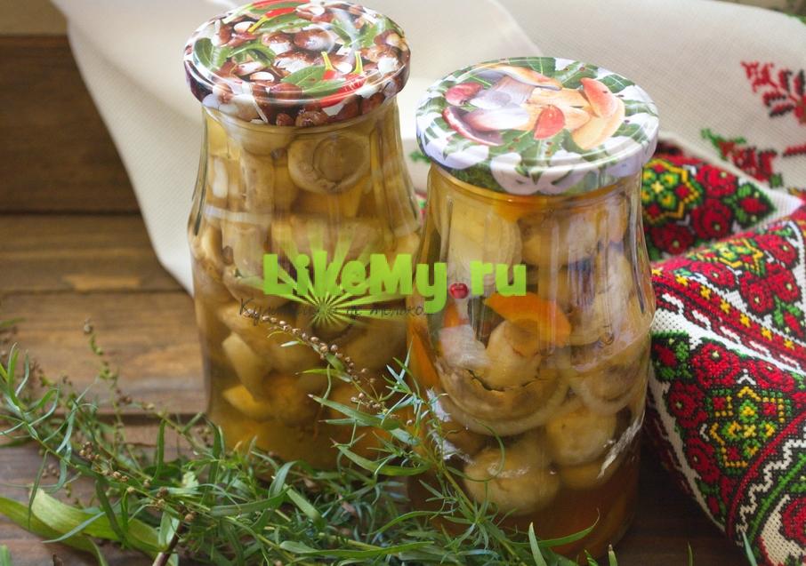 marinovannye-shampinony-v-domashnix-usloviyax-s-lukom-i-morkovyu