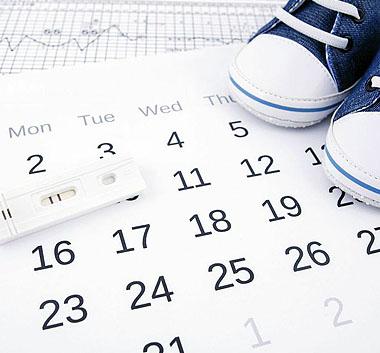 Посчитать овуляцию онлайн для зачатия девочки