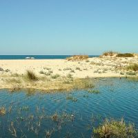 Playa de Trafal