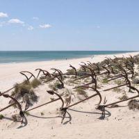 Playa del Barril