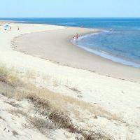 Playa de la Isla de Armona
