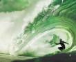TCT Surf Contest Pufferfish - Makaha, Oahu