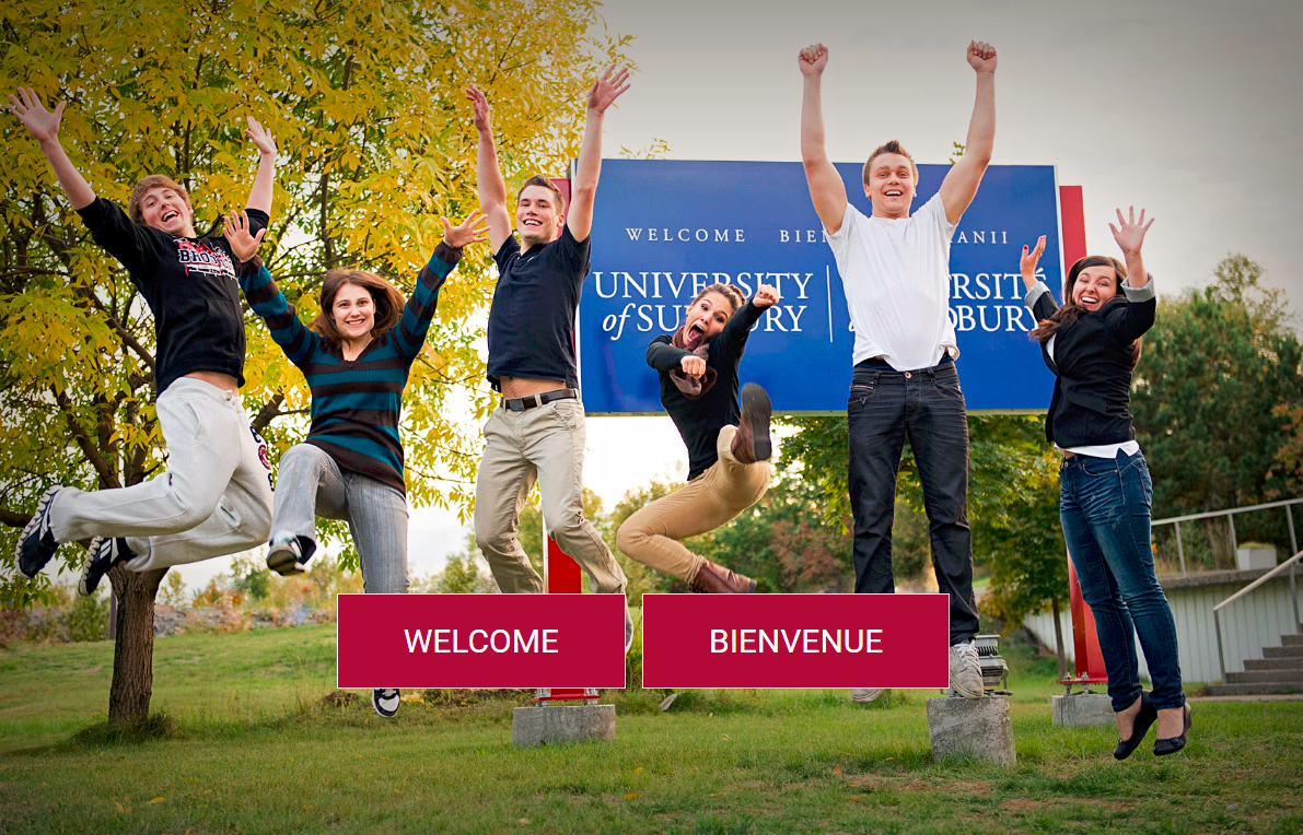 University of Sudbury