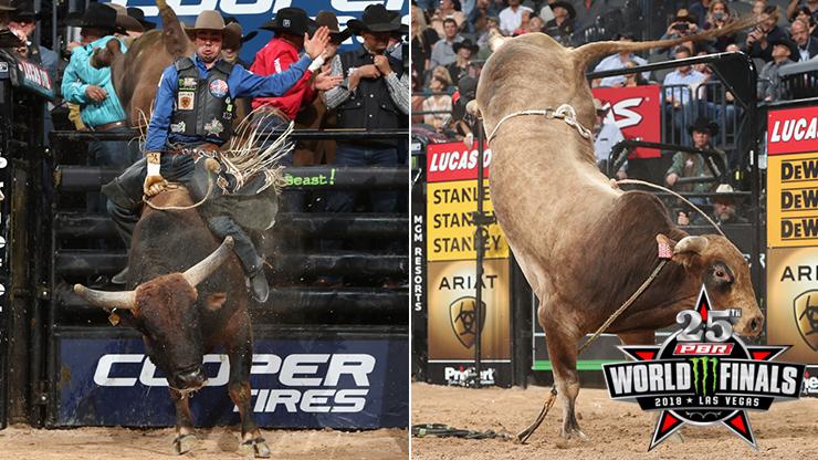 Legit and Hocus Pocus split 2018 Bull of the Finals title