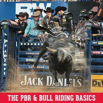 Bull Riding Basics
