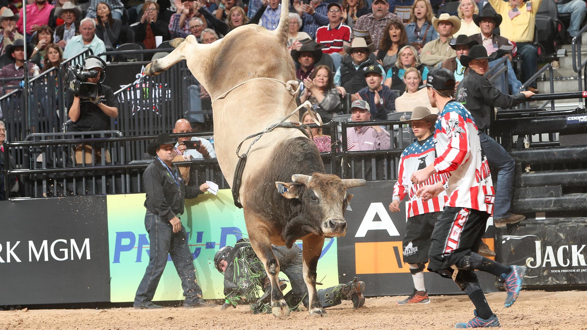 SweetPro's Bruiser to buck in Texas this weekend