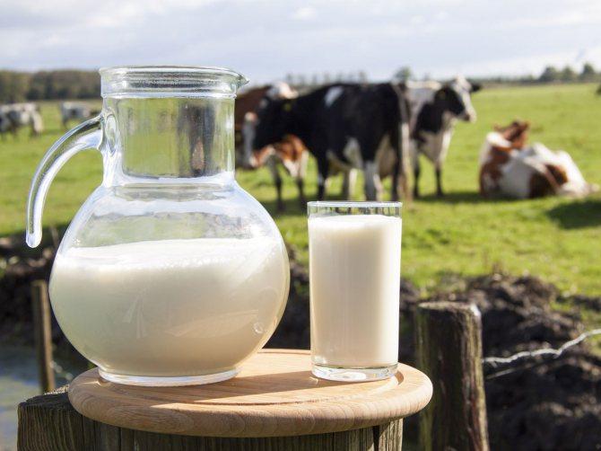 Деревенское молоко