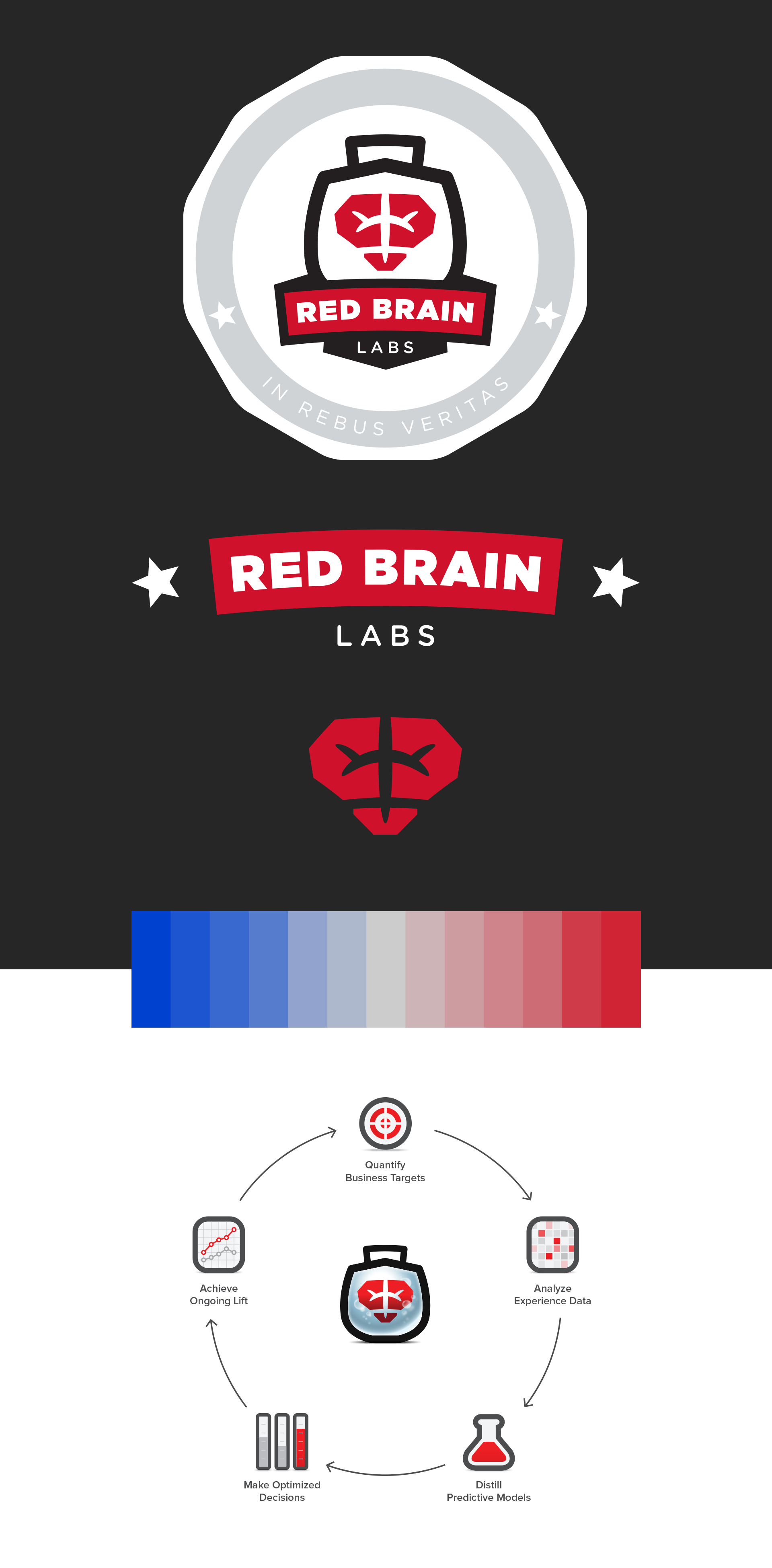 Red Brain Labs Brand Identity