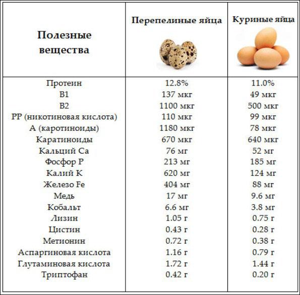 Пищевая ценность перепелиного яйца