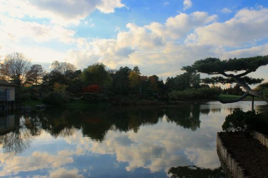 Chicago Botanic1