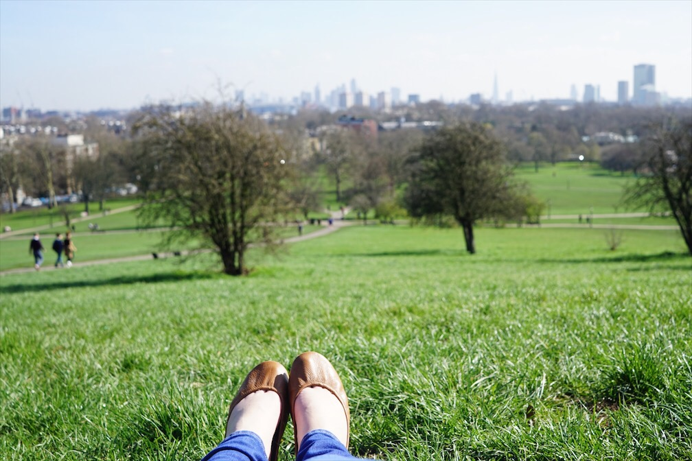 primrose hill relax