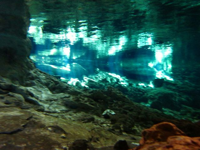 day trips from cancun to the cenotes
