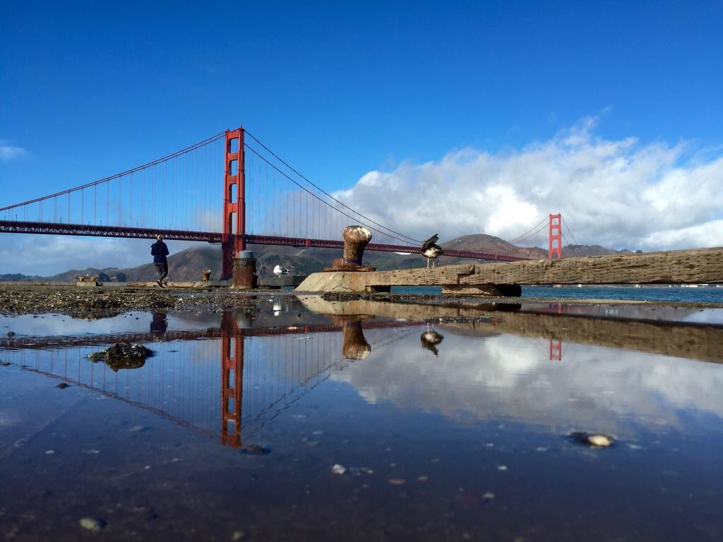 Golden Gate Bridge Reflection