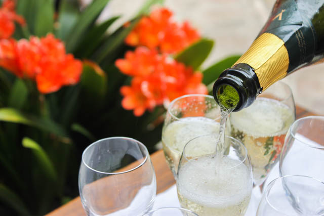 Cava in Costa Brava