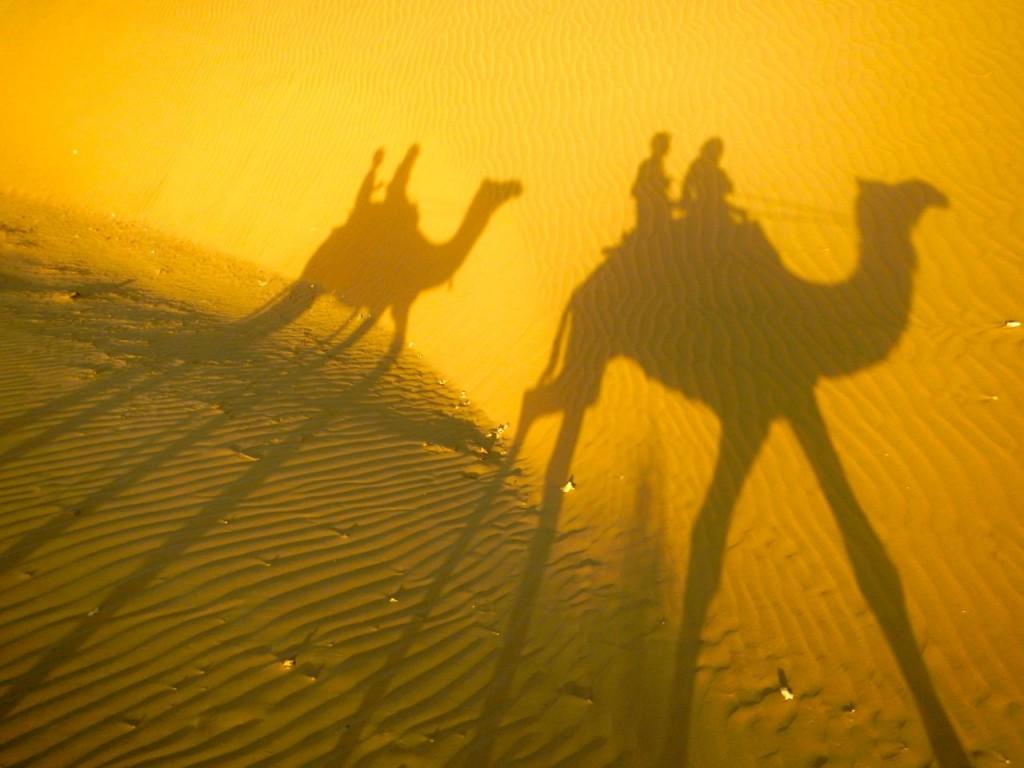 desert safari india