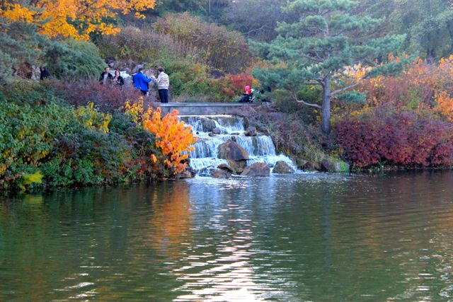 Chicago Botanic04