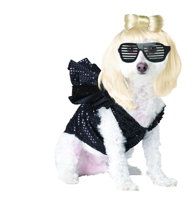 Lady gaga dog costume