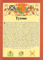surname database tyrone last name origin