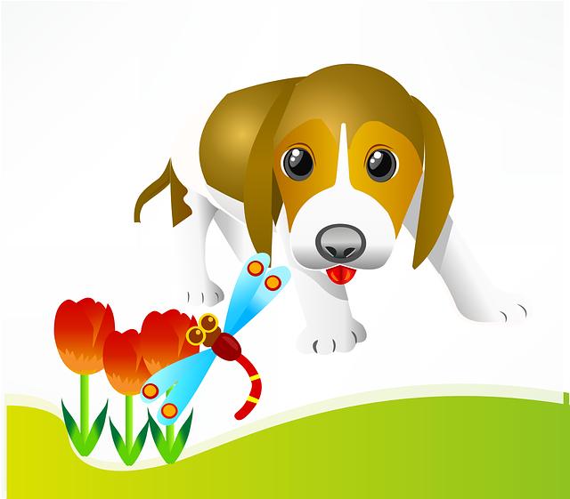 puppy-155280_640