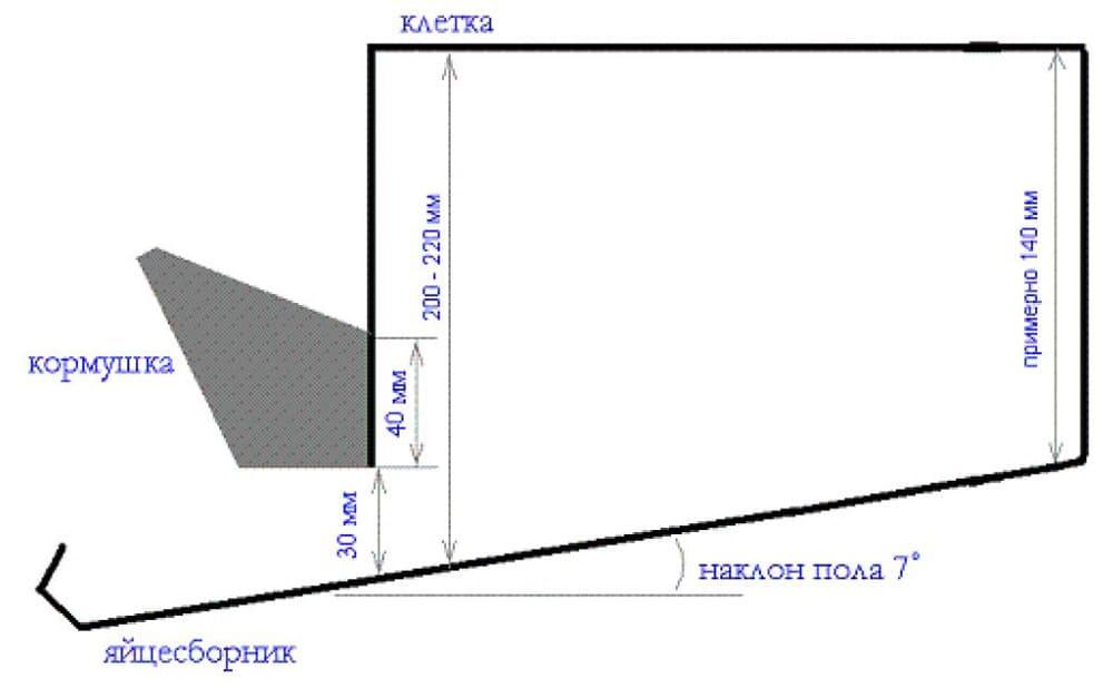Ориентировочные параметры бескаркасной конструкции для взрослых особей