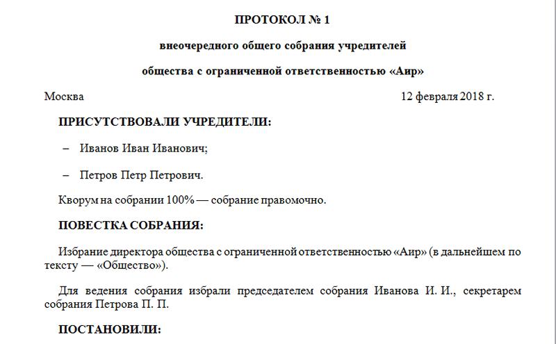 Протокол собрания учредителя о назначении директора