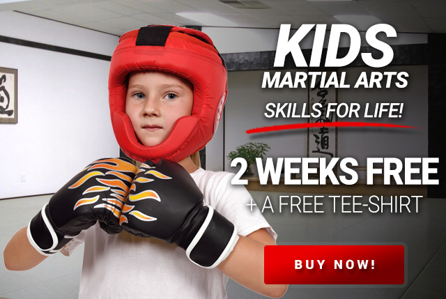 Kids Martial Arts in stow