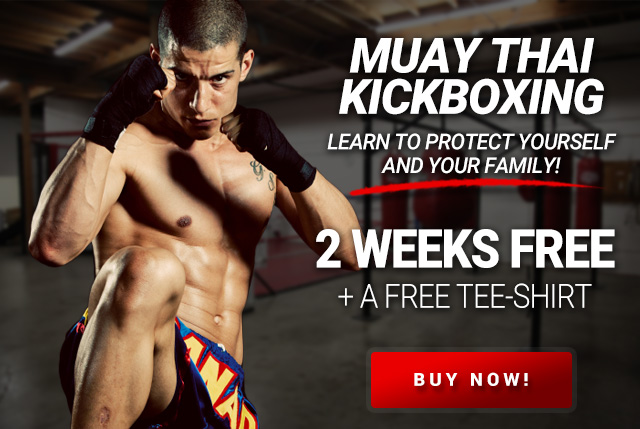 muay thai kickboxing in stow