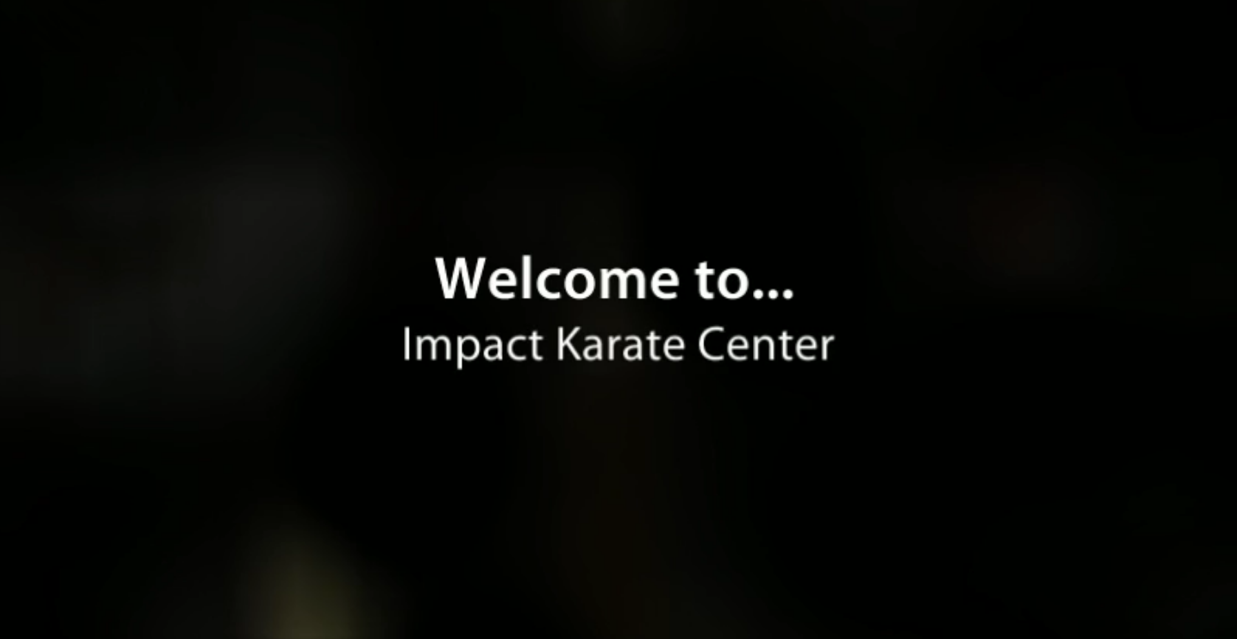 Impact Karate Center, in the Wesley Chapel - Zephyrhills Florida area, offers a variety of Okinawan Karate training programs that will fit your family needs